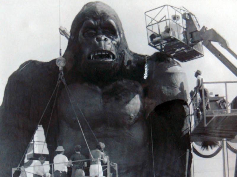 Realizzazione di Kong gigante