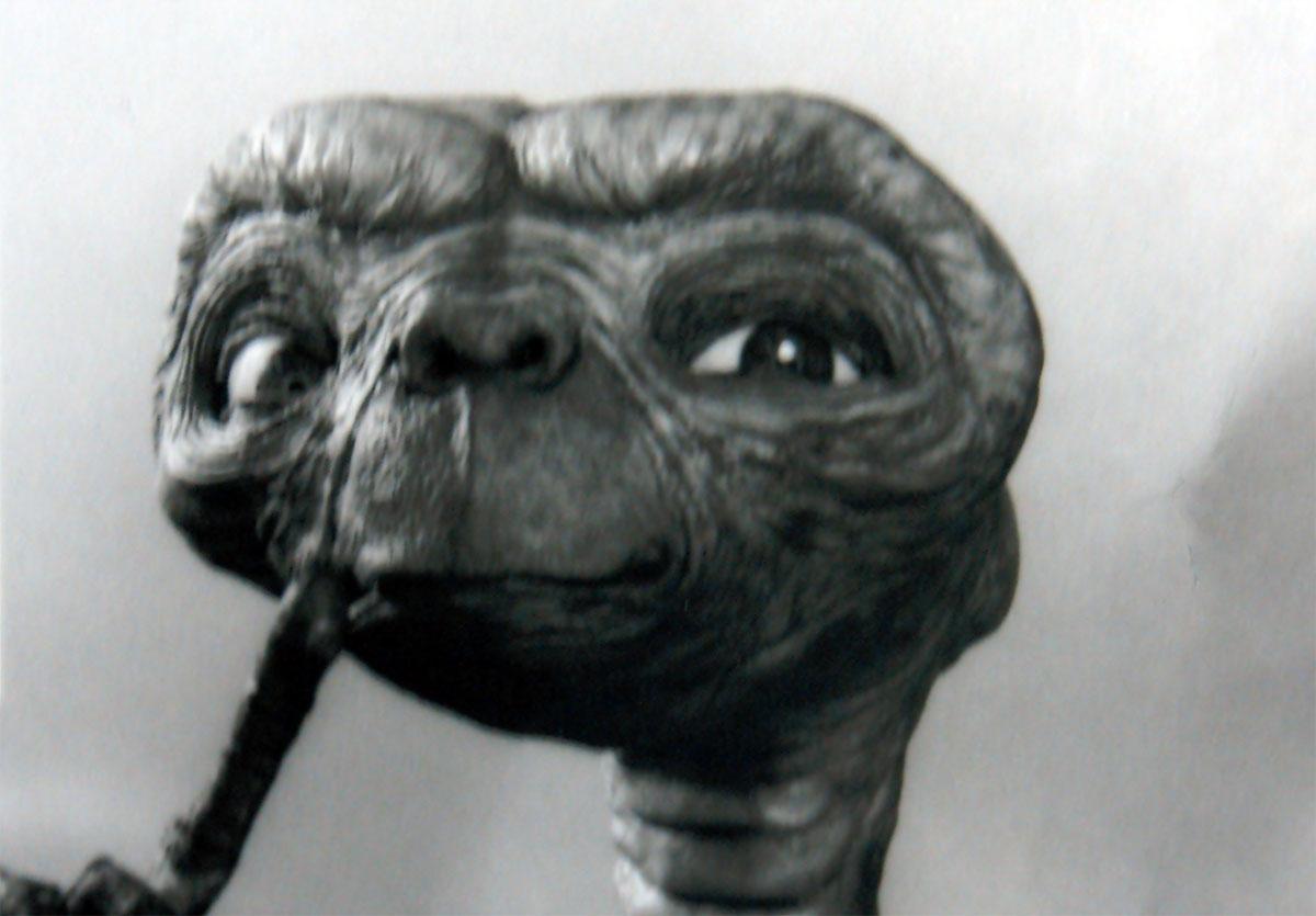 Testa di ET costruita in Foam Latex