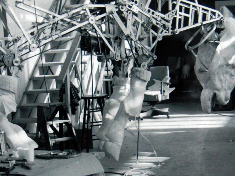 La struttura meccanica del bufalo
