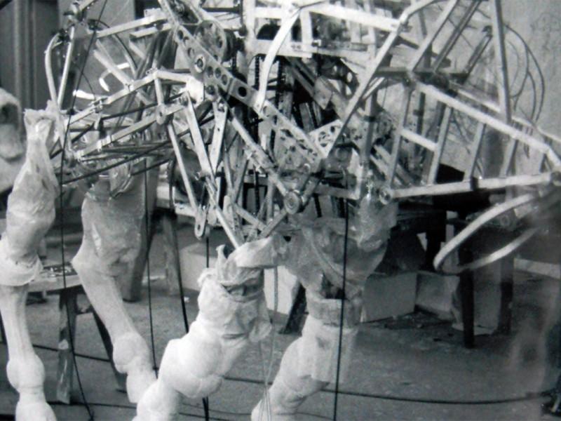 Struttura meccanica del bufalo - Fase di galoppo