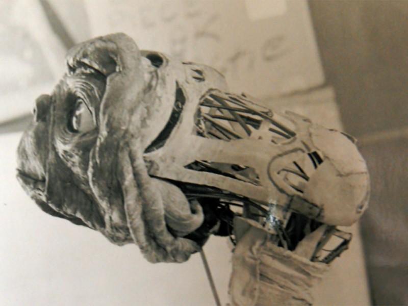 Struttura meccanica della testa di ET
