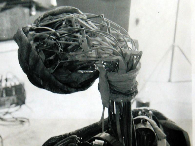 Struttura meccanica della testa e del collo di ET
