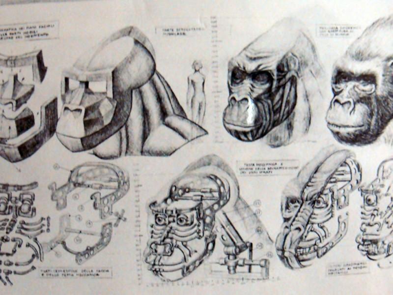 Studio della meccanica della testa di Kong