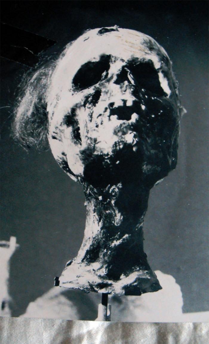 studio_di_mummia