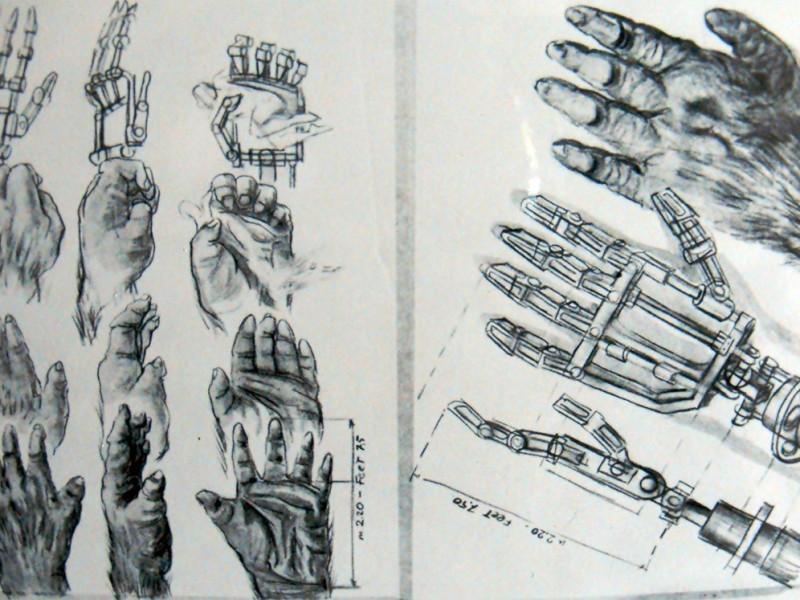Studio del movimento delle mani di Kong