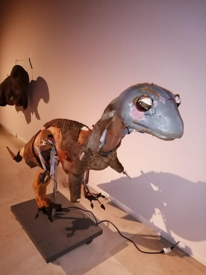 foto rex mostra